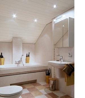 Badkamer plafond | luxalonexpert